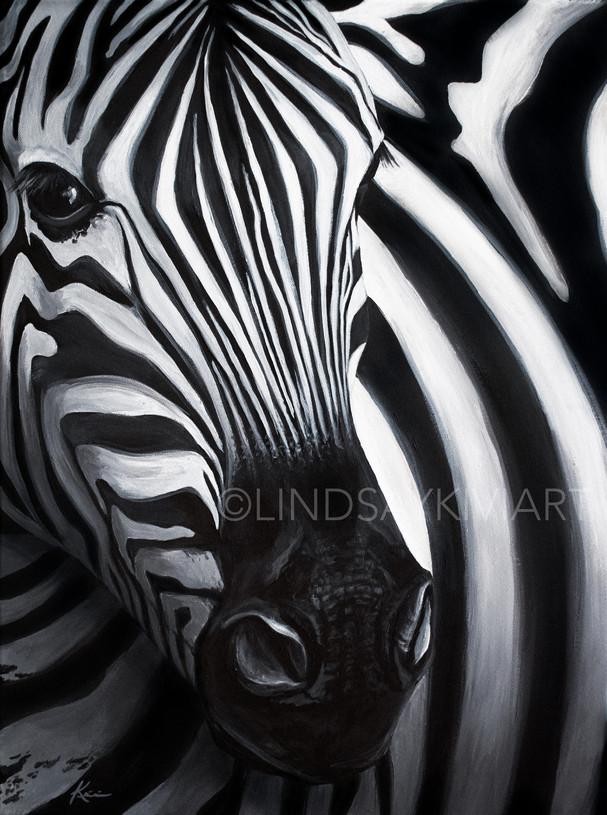 Zebra Water-01.jpg