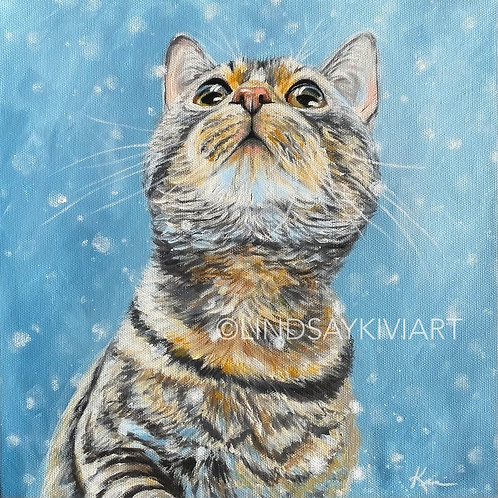 """Tabby"" 12x12 Acrylic Painting **FLOATER FRAME INCLUDED"