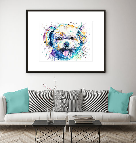 Shih Tzu (Mix)  - Colorful Watercolor Print
