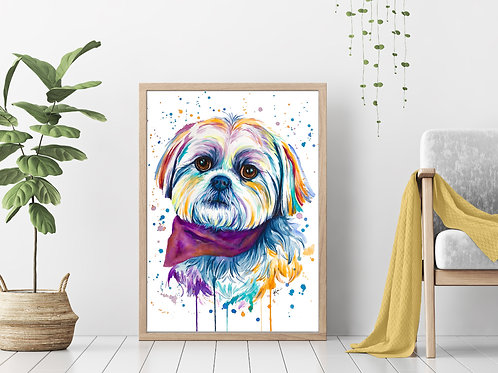 Shih Tzu - Colorful Watercolor Print