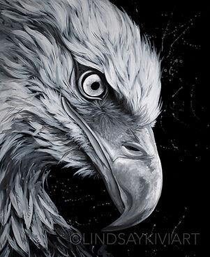 Free Bird_Water-01.jpg
