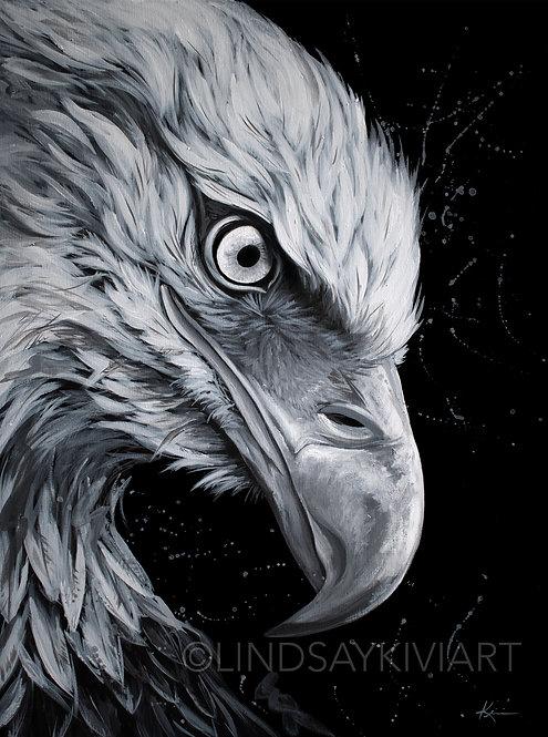 """Free Bird"" Fine Art Print"