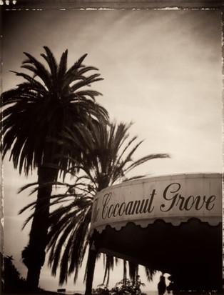 ©2005_McHugh_Cocoanut Grove.jpg