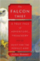 FALCON THIEF.jpg