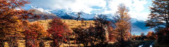 Yendegaia - Tierra del Fuego.jpeg