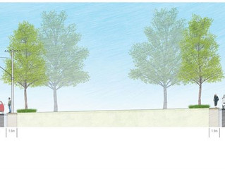 Streetscape Plan Adopted by Council