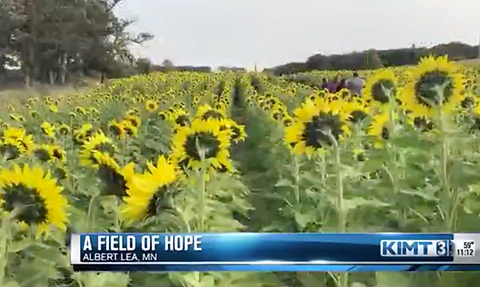 A Field of Cousins Grow a Field of Hope in Albert Lea Minnesota
