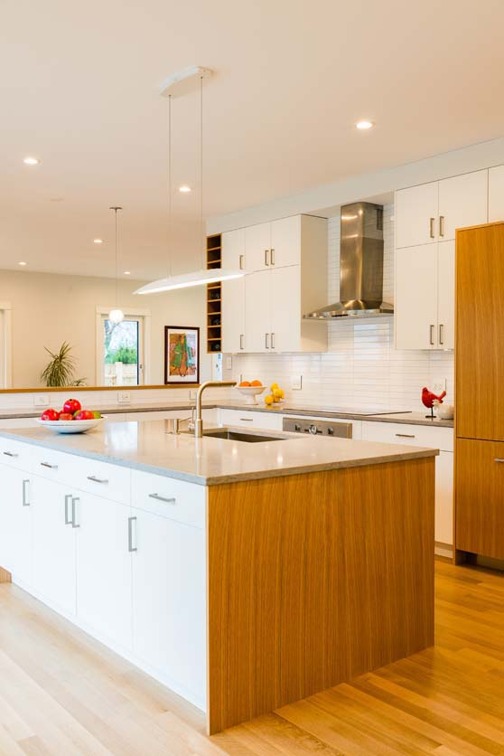 9 Audrey Road - kitchen 2