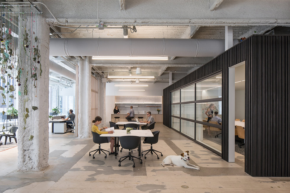 stahl-construction-msr-design-corporate-
