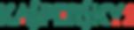 Logo_kaspersky_slide.png