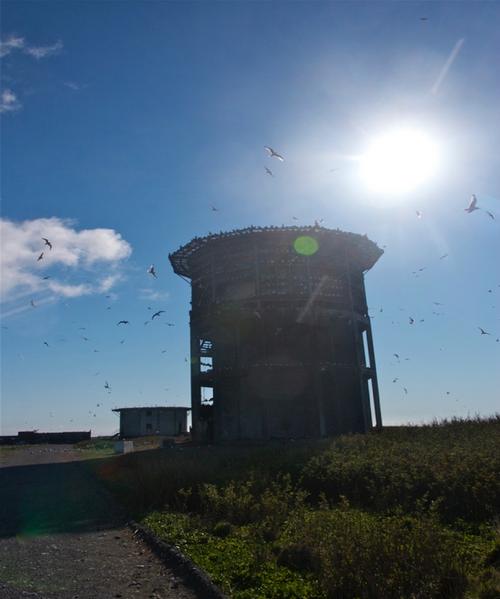 towerMiddleton.png
