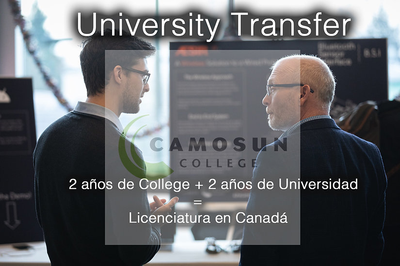 University-Transfer-.jpg