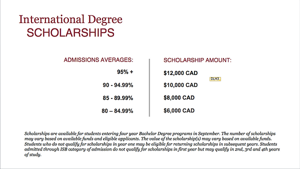 International scholarships.png