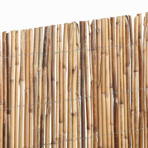 Ejemplo de cañas de bambú