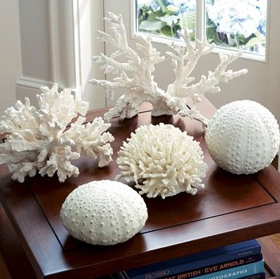 Adornos de coral