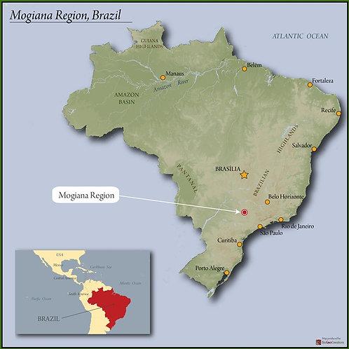 Brazil Mogiana FC SS