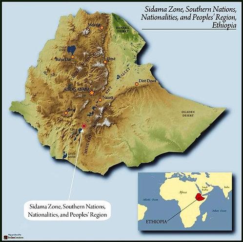Ethiopia Sidamo 2 Washed