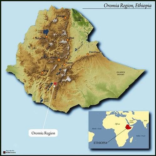 Organic Ethiopia Limu 1 RFA Duromina GRAINPRO