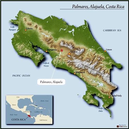 COSTA RICA WEST VALLEY MONTE CRISOL SHB EP