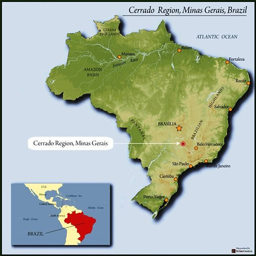 Brazil Cerrado FC SS
