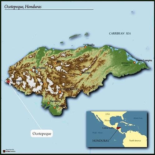 HONDURAS ORGANIC OCOTEPEQUE SHG EP