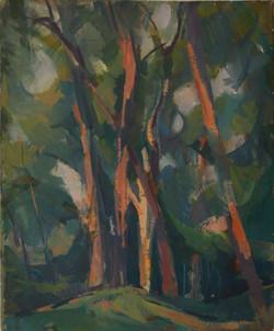 Forêt de Marly