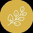 icon_eucalyptus.png