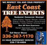 East Coast Tree Experts