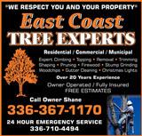 East Coast Tree Experts