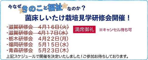 きのこと福祉スケジュール190416改:HP用_.png