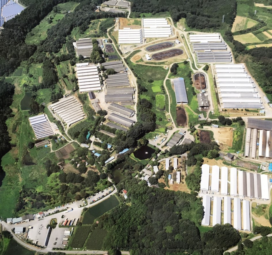 Shinmei Farm, Japan