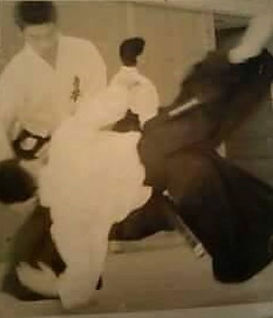 japanese Aikido and acupuncture Dr