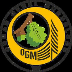 General Forrest Directorate