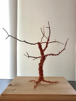 1.1_The_Tree_of_Life_Front