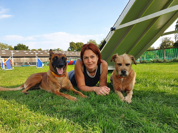 activity4paws-dog-agility-training-south