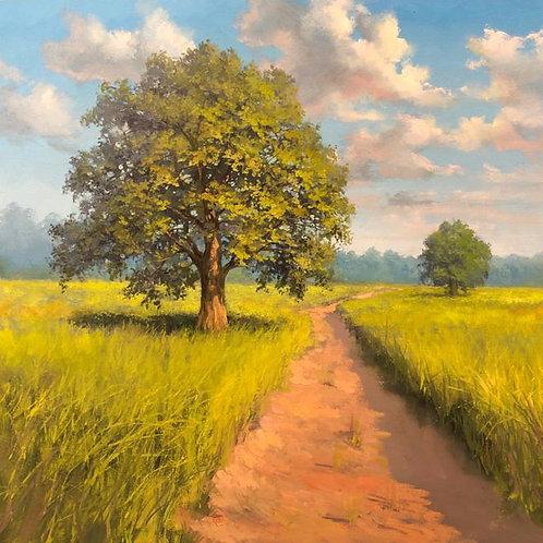"""Урок """"Дерево в поле"""""""