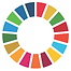 UN DSG Circle.png
