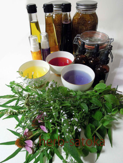 base herbs