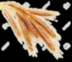 vernais épi de blé 7a - commissions et syndicats