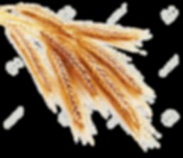 vernais épi de blé dans l'onglet accueil