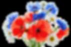 vernais bouquet de fleurs - Nature et Fleurissement