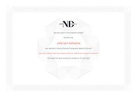 nd_certifcate_jose_ney_espinosa.jpg
