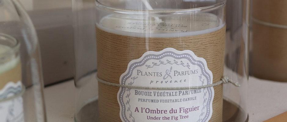 Bougie naturelle parfumée A l'ombre du figuier
