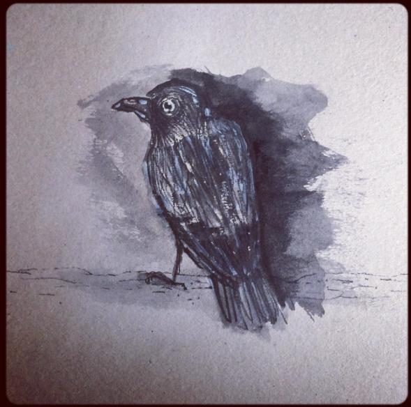 Dark Crow - 2017