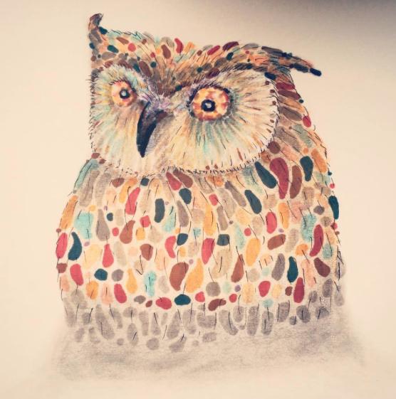 Rainb-owl - 2016