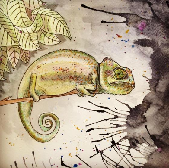 Karma Kameleon - 2016