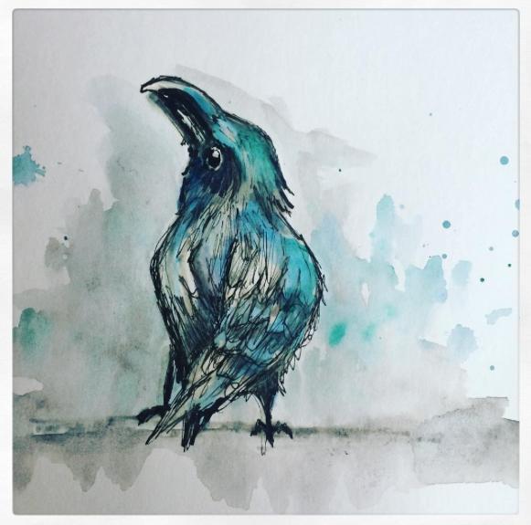 Crow - 2016