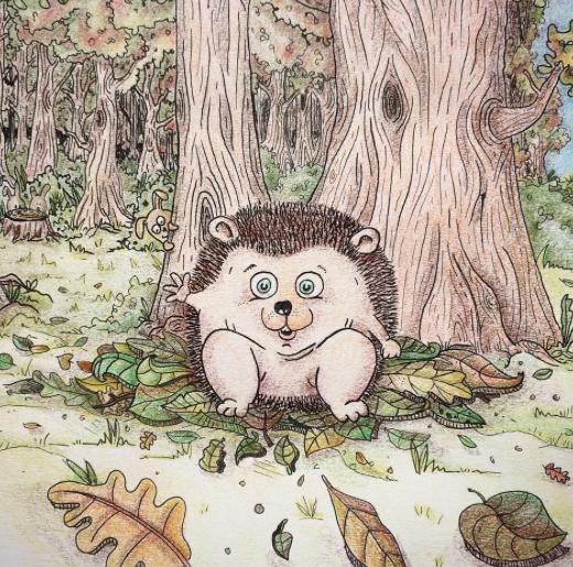 Hedgehog - 2016