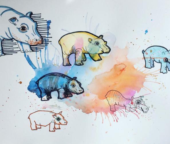 Hippo's - 2016