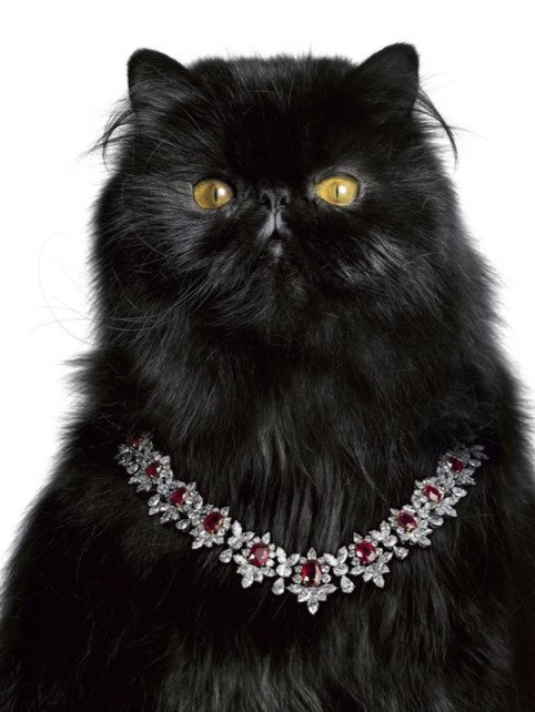 Harry Winston Cat diamond necklace
